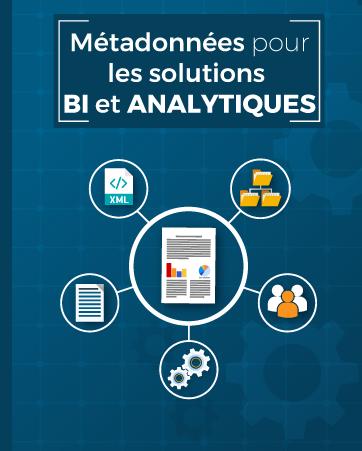 metadatonnees-solutions-bi-analytiques