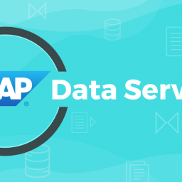 Documenting SAP BODS Metadata