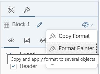 format-painter-option-bi-4-3-sp02